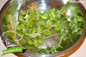 Заготовка сушеной стевии | Шаг 1