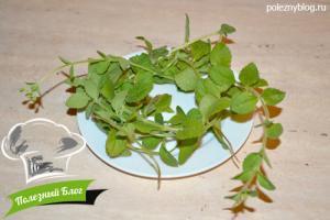 Заготовка сушеной стевии | Ингредиенты