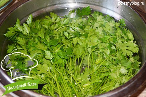 Суп из шпината со сливками рецепт с фото